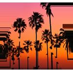 LA Overlay Palm